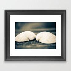 Sea Shell Love Framed Art Print