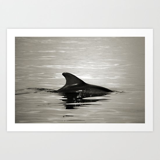 Breaking the surface  Art Print