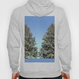 Colorado Blue Spruce, front yard, doubled Hoody