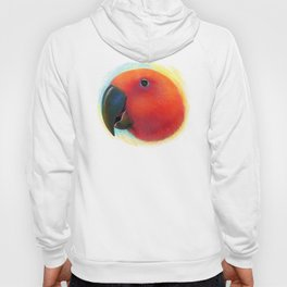 Red female eclectus parrot realistic painting Hoody