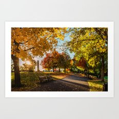 Crazy Fall Art Print