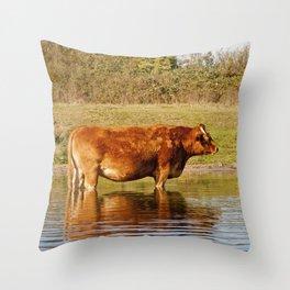Red Bull Throw Pillow