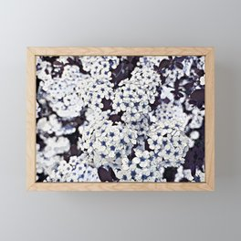Bush of flowers in white and blue Framed Mini Art Print