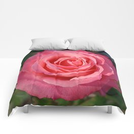 'Cherish' Rose Comforters