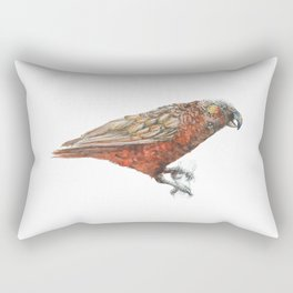 New Zealand parrot, the Kaka Rectangular Pillow