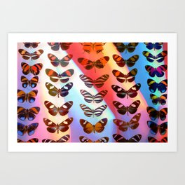 Multicolour Rainbow Butterflies IV Art Print
