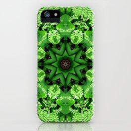 Fern and friends kaleidoscope, mandala - Maidenhair, Adiantum 901 k21 3 iPhone Case