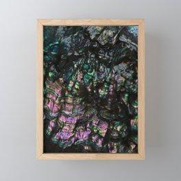 Abalone Shell 4 Framed Mini Art Print
