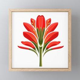 Indian Paintbrush Framed Mini Art Print
