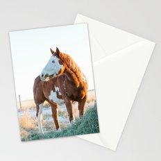 Pferd Stationery Cards