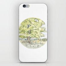 Crop Circle 03 iPhone & iPod Skin