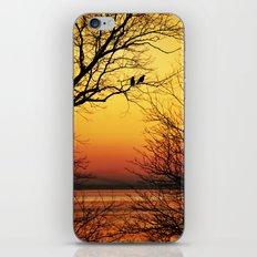 Sunrise Submission iPhone & iPod Skin