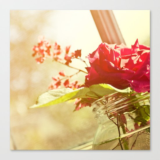 Sunlit Recollections Canvas Print