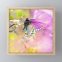 Exquisite is the Beauty of a Butterfly Framed Mini Art Print