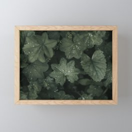 Flora - Landscape and Nature Photography Framed Mini Art Print