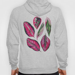 Calathea pink leaves Hoody
