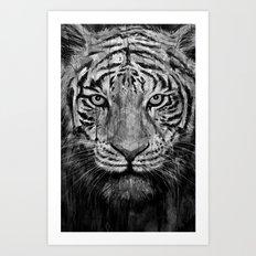 Tiger Black & White Art Print