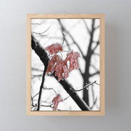 Scarlet Red Leaves in Winter Framed Mini Art Print