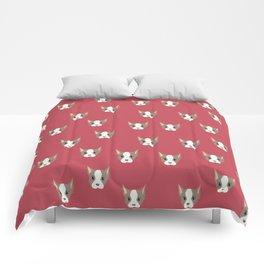 Ollie, Dapperdog says Allo Comforters