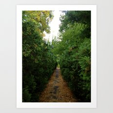 A Path Worth Taking Art Print