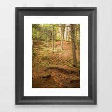 Life Is Uphill Framed Art Print