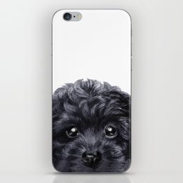 Black toy poodle Dog illustration original painting print iPhone Skin