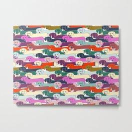 colored doggie pattern Metal Print