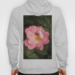 A rose and the fly insect Hoody