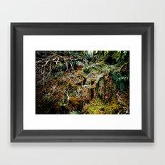 Fernite Framed Art Print