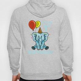 Cute 1st First Birthday Elephant Hoody