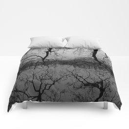 Reflection #2 Comforters