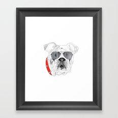 BallDog Framed Art Print