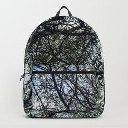 Pin Hole Backpack