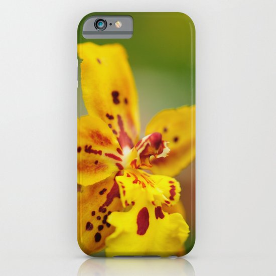 Reach for the Sun iPhone & iPod Case