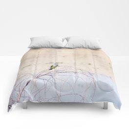 """Pretty Kingbird"" by Murray Bolesta Comforters"