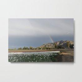 Rainbow South Mountain, Santa Paula California Metal Print