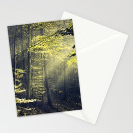 Being There - Morning Light in Forest Stationery Cards
