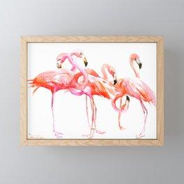 Flamingo design, flamingo art, flangos, pink flamingos bird design, Framed Mini Art Print