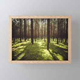 FOREST - Landscape and Nature Photography Framed Mini Art Print