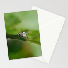 Jumping Spider Stationery Cards