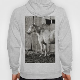 Horse and shed Hoody