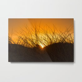 Grass and Sunrise Metal Print