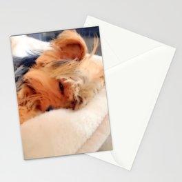 Sweet Dreams Little Yorkie   Nadia Bonello Stationery Cards
