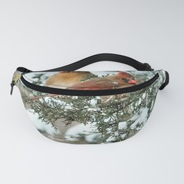 After the Snow Storm: Three Cardinals Fanny Pack
