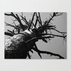 dead tree 2016 Canvas Print