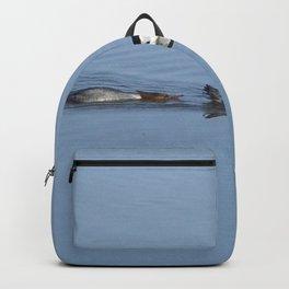 Mergansers on the Kenai Backpack