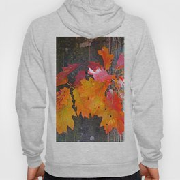 glowing autumn Hoody