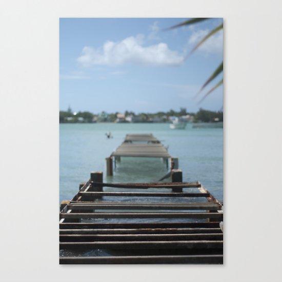 Turquoise Paradise Canvas Print