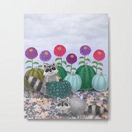 raccoons, heirloom pumpkins, & zinnias Metal Print