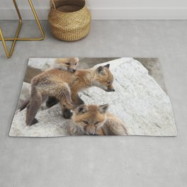 Watercolor Fox, Red Fox 10, Union Reservoir, Boulder Rug